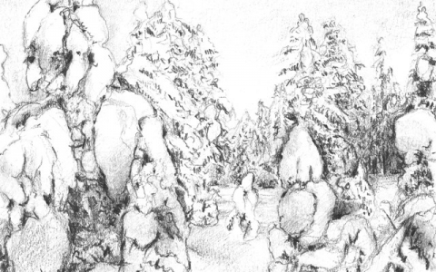 Snowyforest I, 2013, Pencil