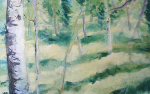 Auttikonkaan metsässä kesällä