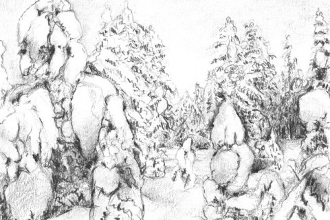 Snowyforest I, 2013, Pencil
