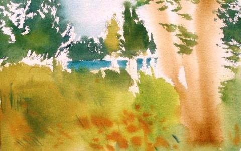 Ruotinkylällä 2010, Akvarelli