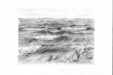 14 Meriaiheinen piirustus, lyijykynä