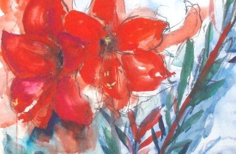 Punainen amaryllis 2010