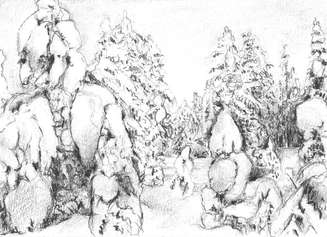 Snowy forest I